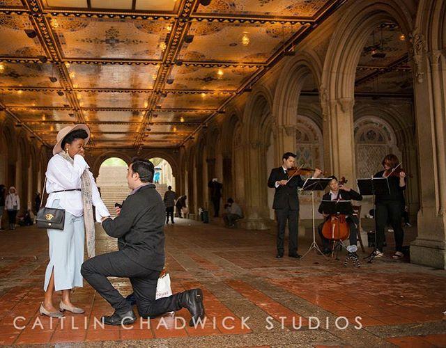 A romantic surprise #CentralPark proposal serenaded by #AristoStringsNYC 💍 . . #marriage #surprise #proposal #shesaidyes #music #wedding #NYCwedding #NYCweddingphotographer #NYCeventplanner #luxury #luxurytravel #luxurywedding #destinationwedding #travel #NewYorkbride #NewYork #NY #NewYorkCity #NYC