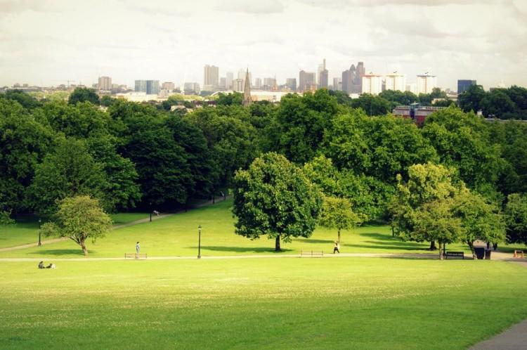 Primrose Hill London