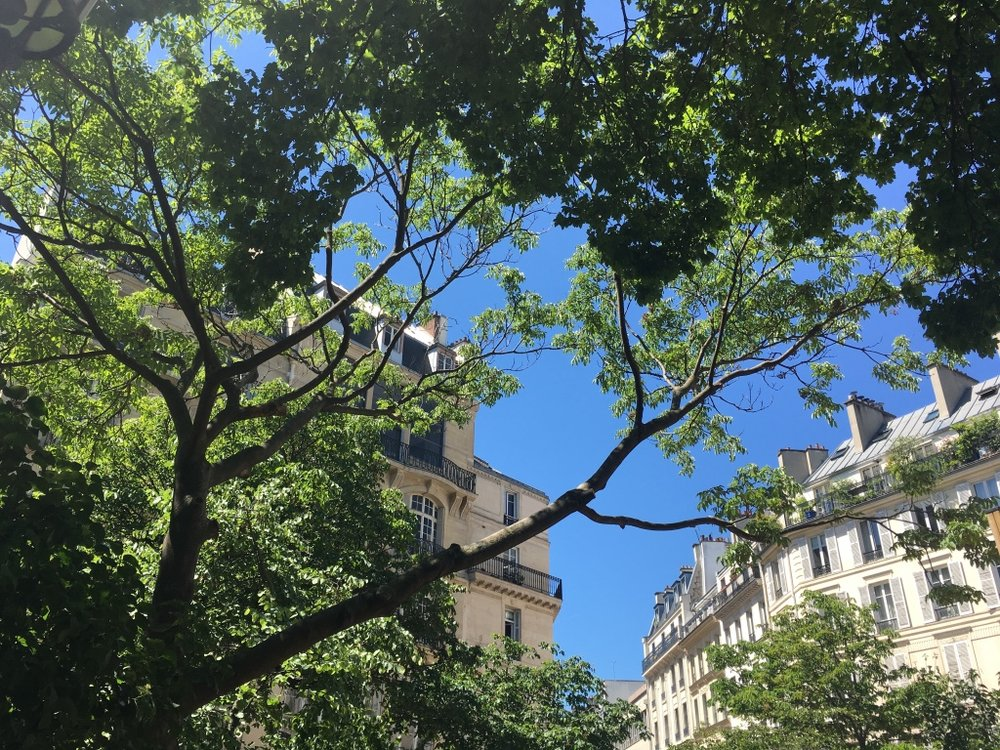 Paris Häuser 1.jpg