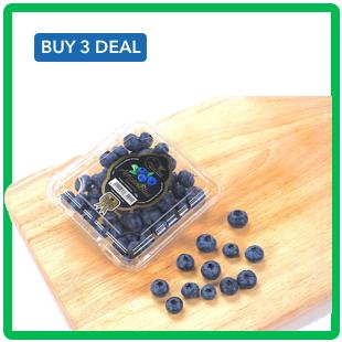 blueberry v2.png