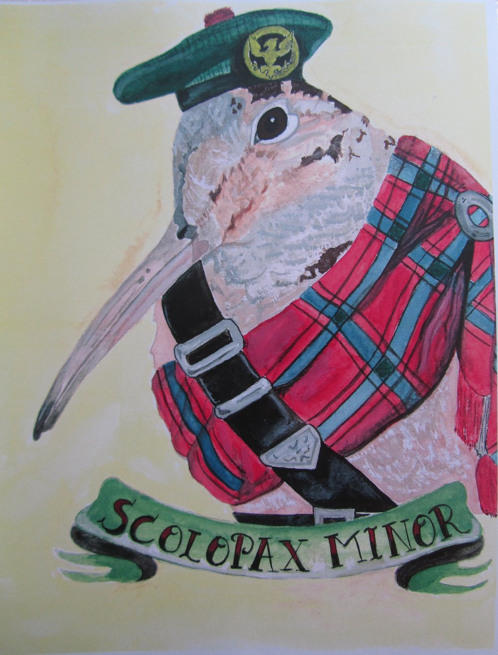 Scotsman Highlander Woodcock