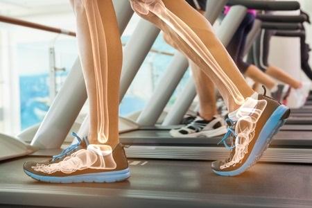 42560268_S_Running_Legs_Bones_Feet_Athlete_Exercising_Health_Shoes_Leg_Treadmill_Training_Gym_Ankle_Active_.jpg