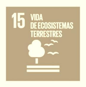 #ODS15