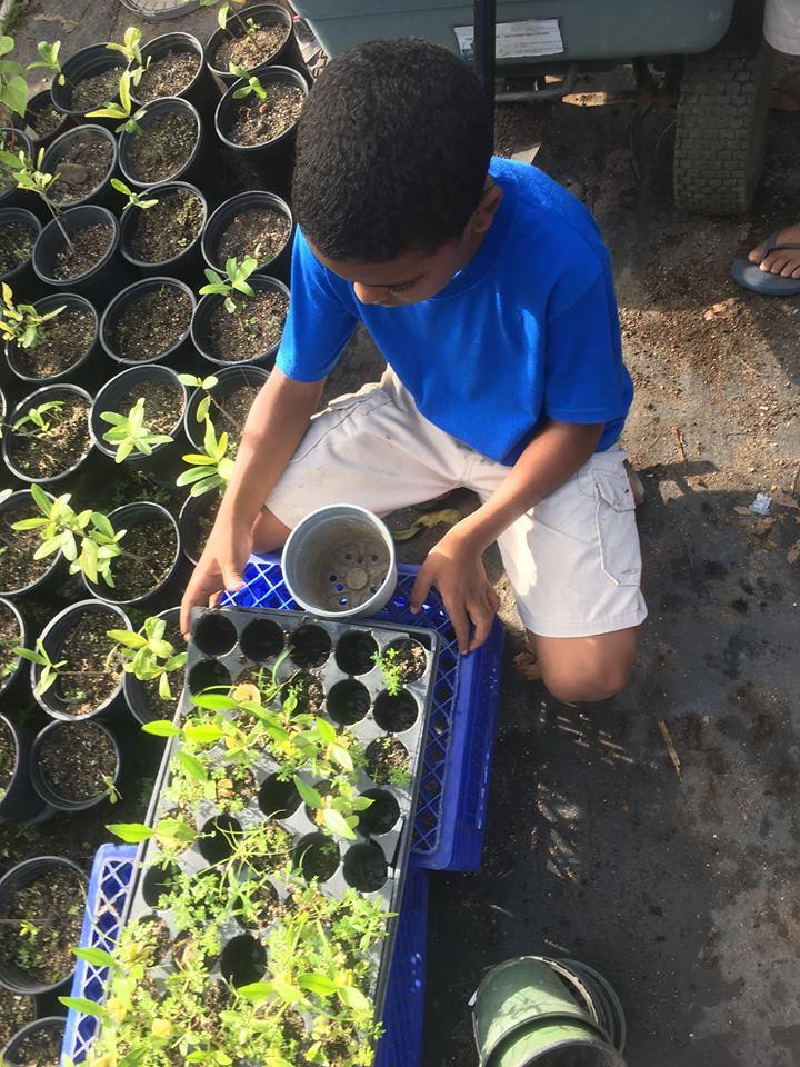 estudiante sembrando.jpg