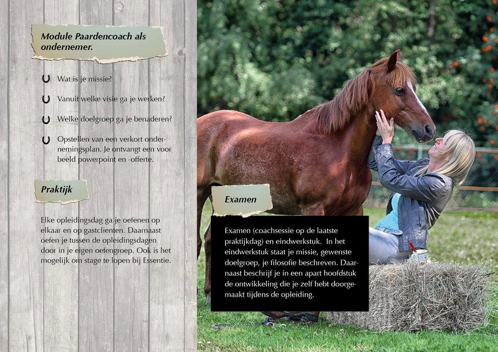 ZandBij_Essentie Digitaal magazine_pag19.jpg