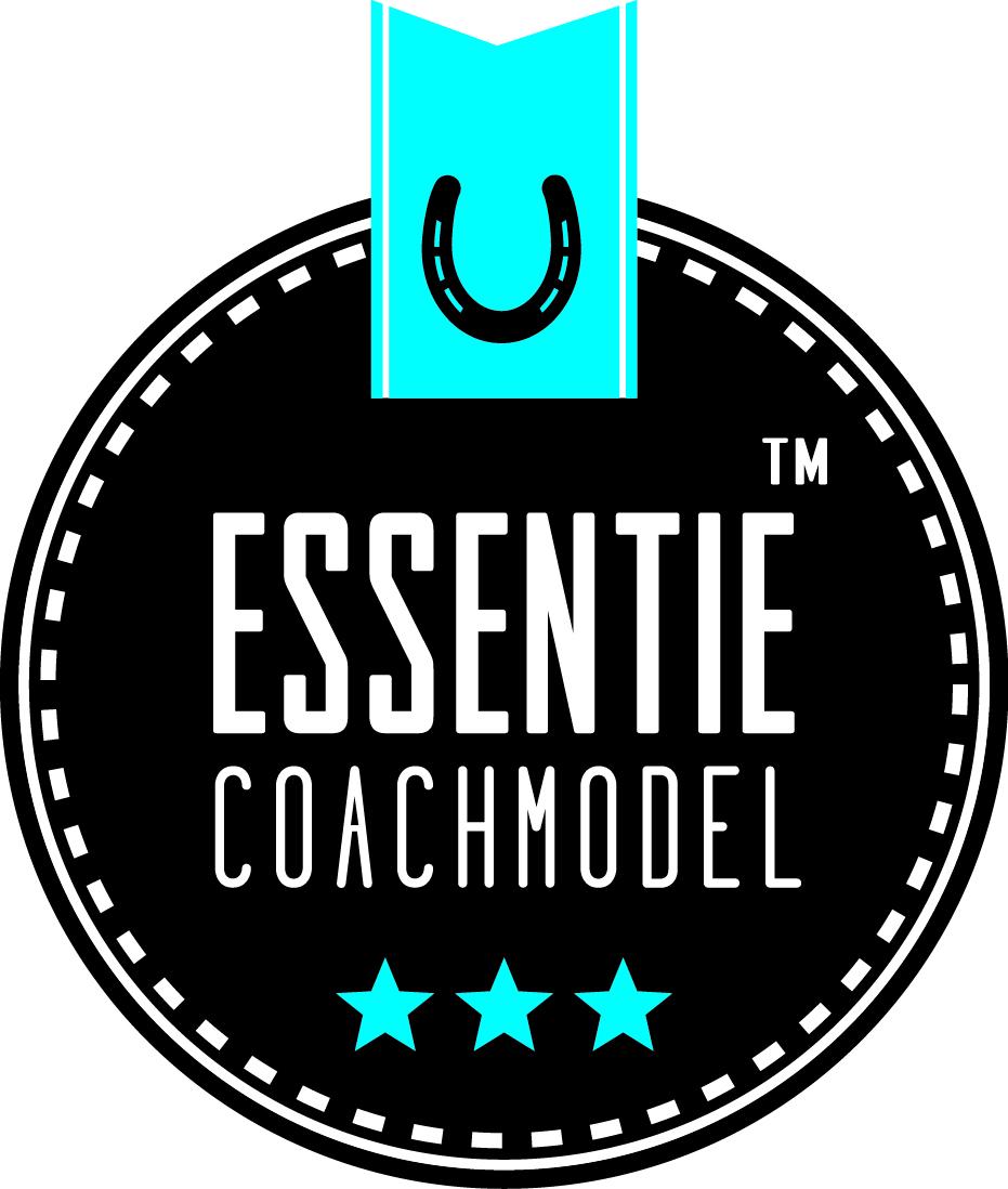 ZandBij logo ontwerp Essentie Coachmodel.jpg