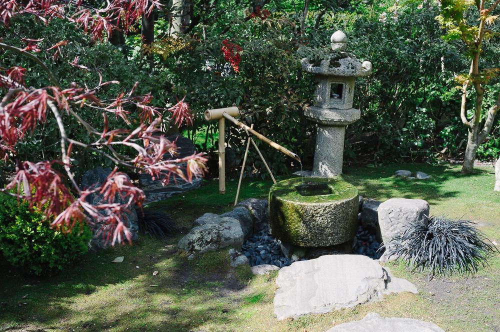 Japanese Garden in Holland park