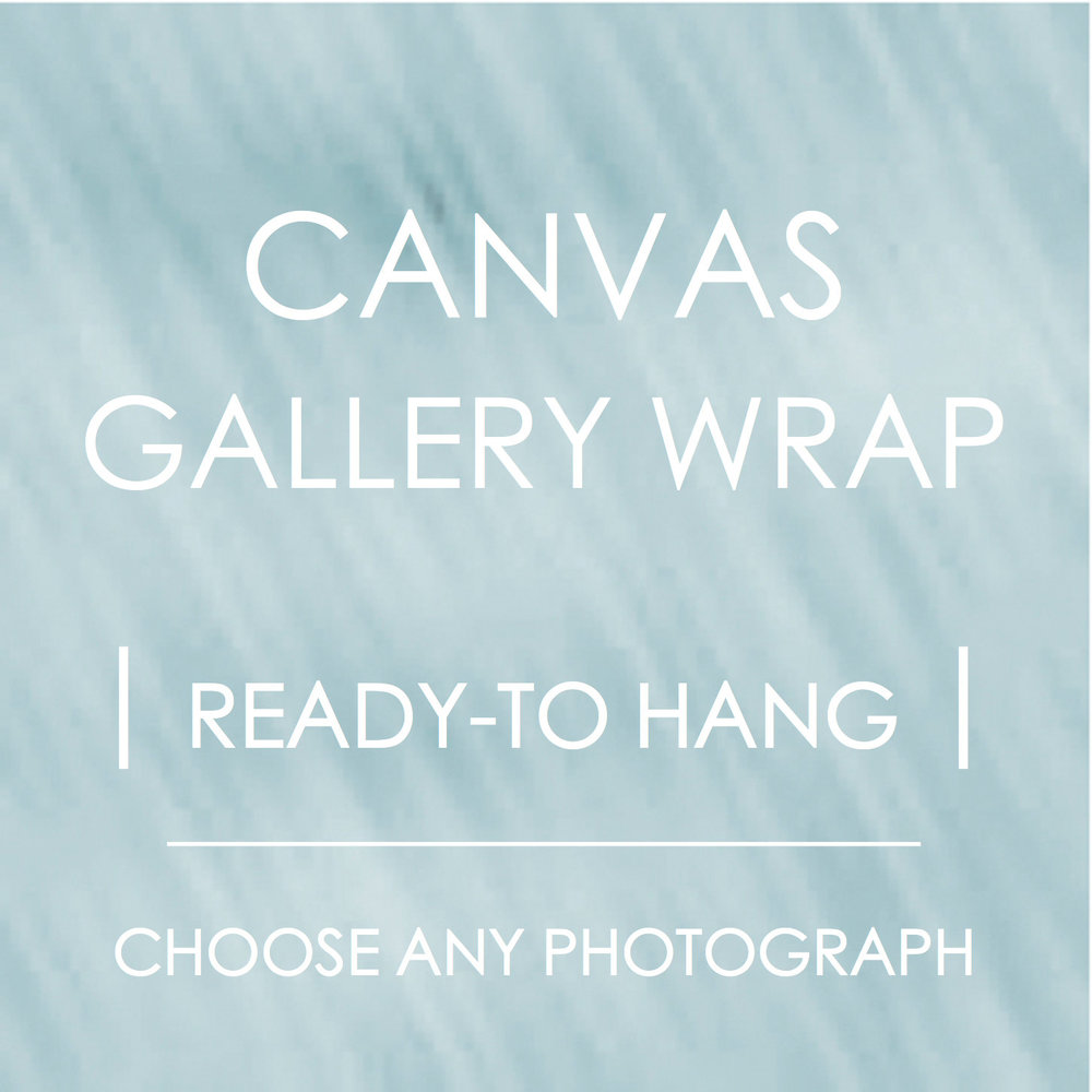 FINE ART CANVAS GALLERY WRAPS FROM $90 USD