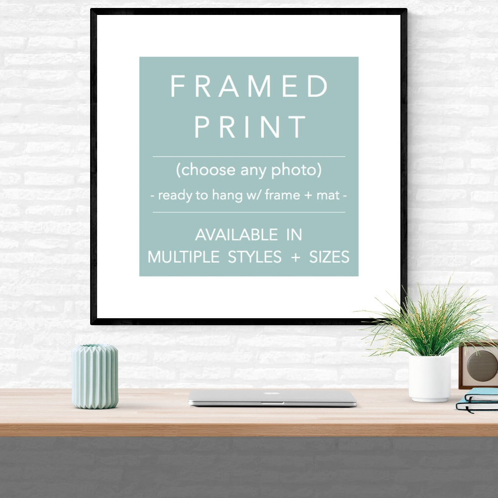 ANY PHOTOGRAPH FRAMED FROM $75 USD
