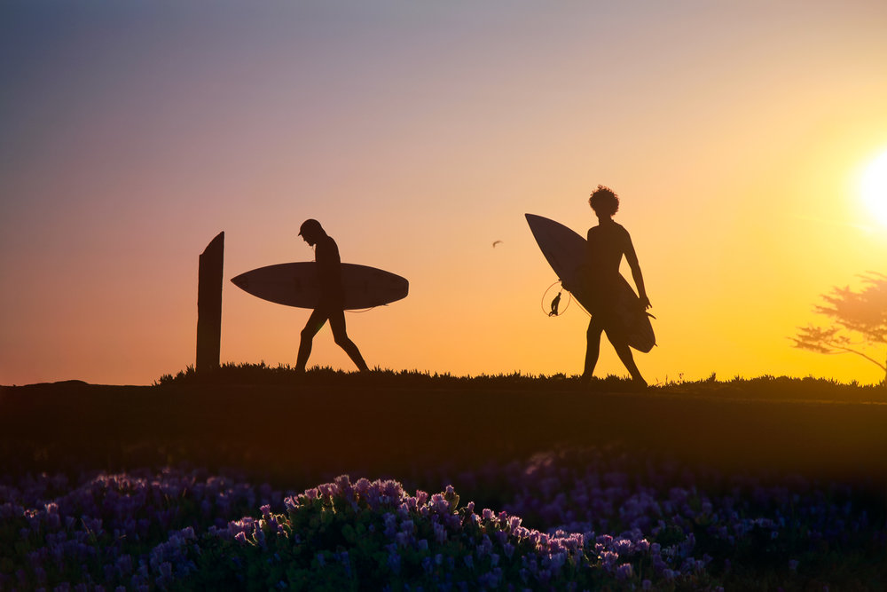 Surfers at sunset, Santa Cruz California