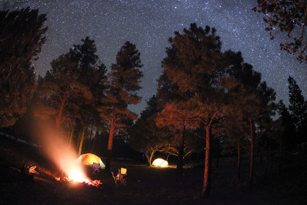 Forest campsite, Arizona