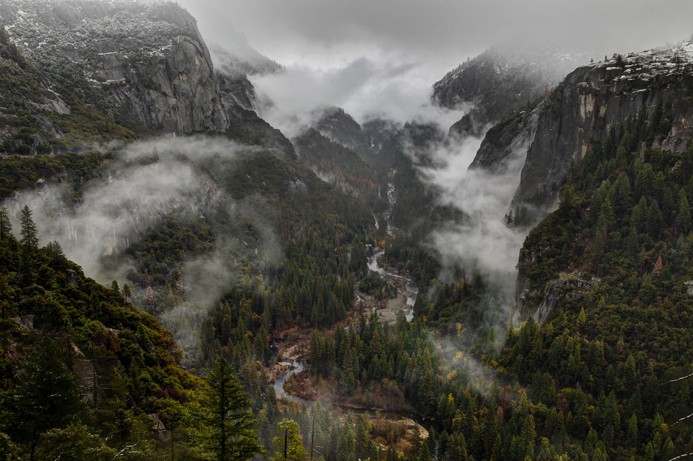 Fog in Yosemite Valley, California