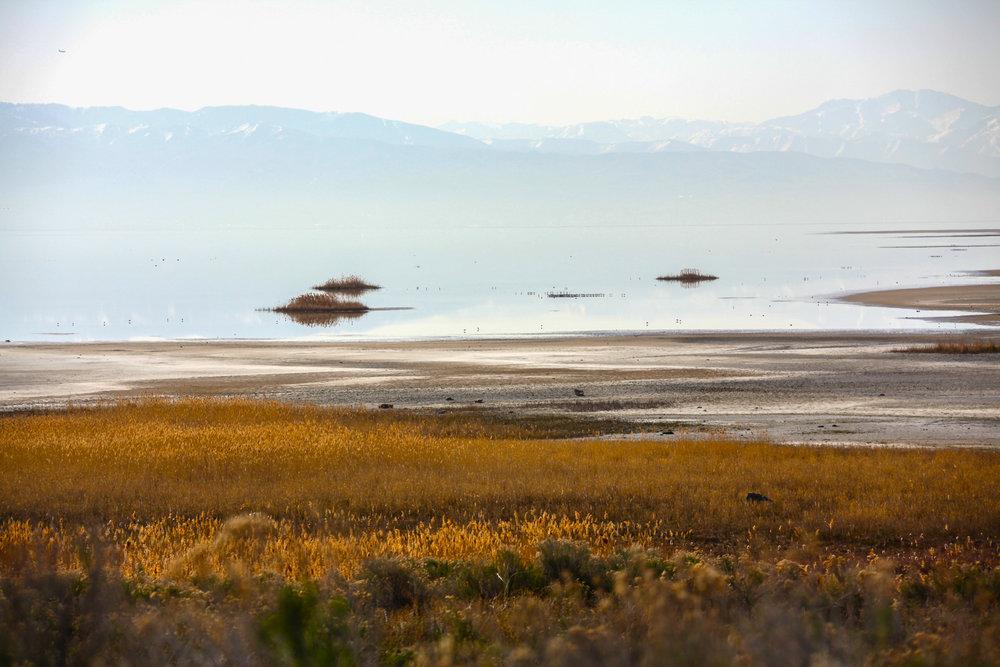 Antelope Island, Utah