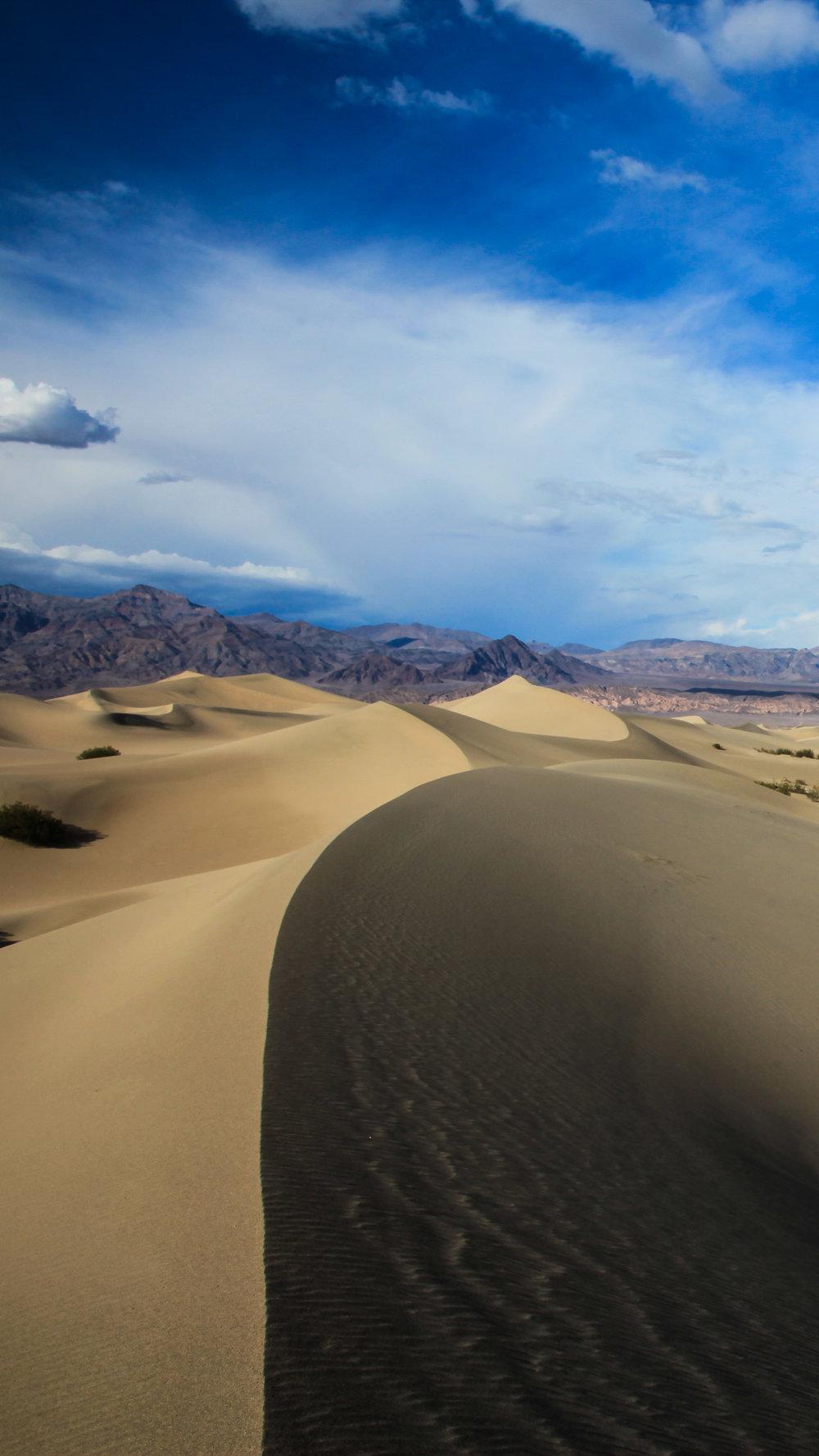 Mesquite sand dunes