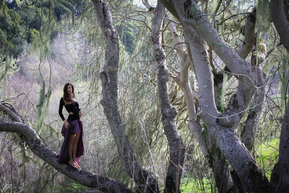 1_26_16 Arielle Wilder Ranch-470.jpg