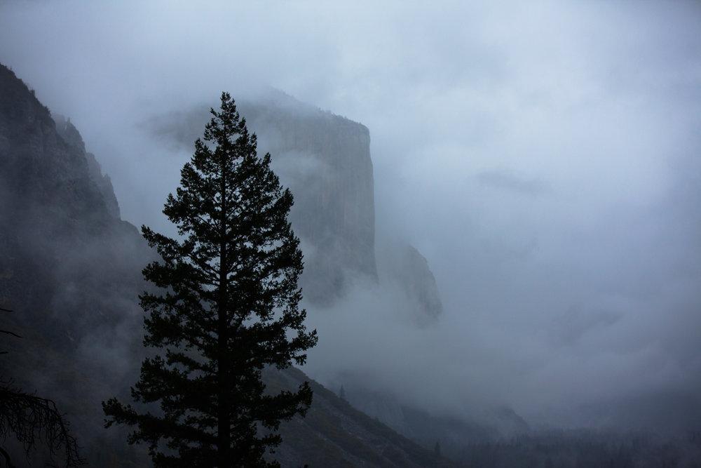 1.6.18 Yosemite Valley -148.jpg