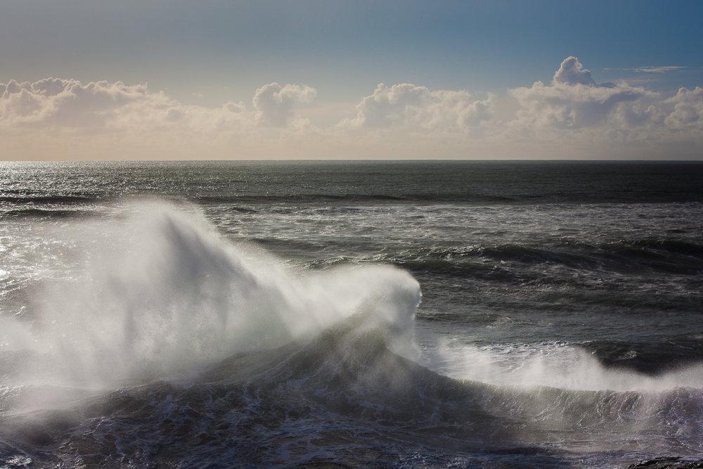 1.19.18 Westside waves-52.jpg