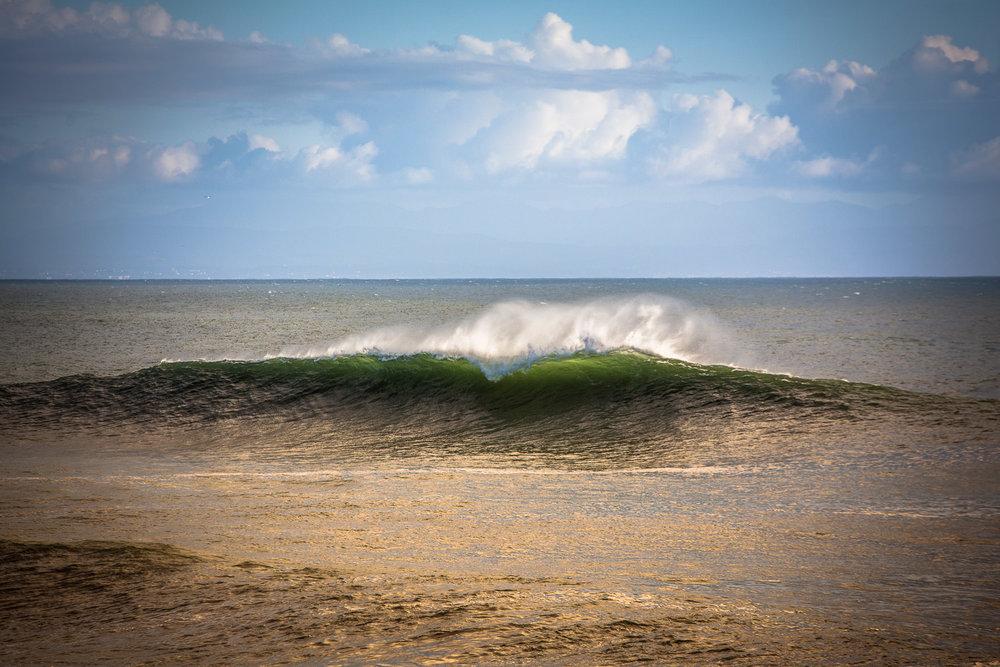 1.19.18 Westside waves-289.jpg