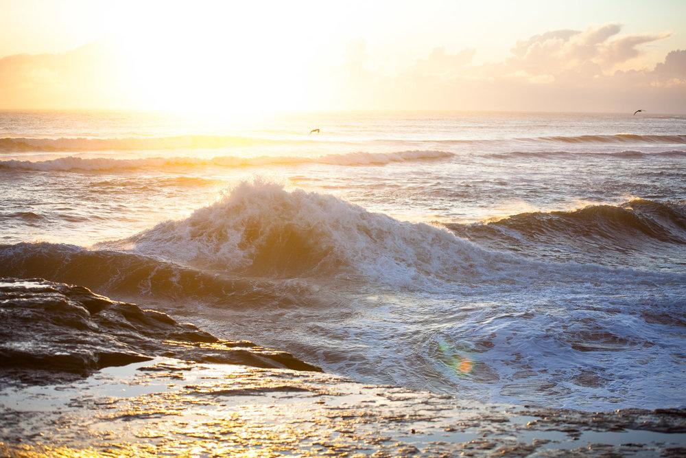 1.19.18 Westside waves-403.jpg