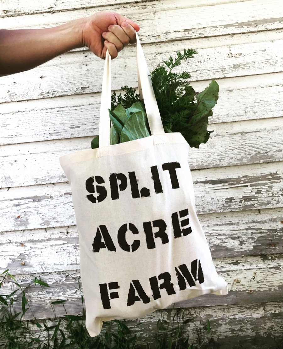 Our Farm Share is a CSA style weekly delivery of all the products our farm has to offer, but this is about much more than food. -