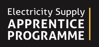 Electricity Supply Apprenticeship Program