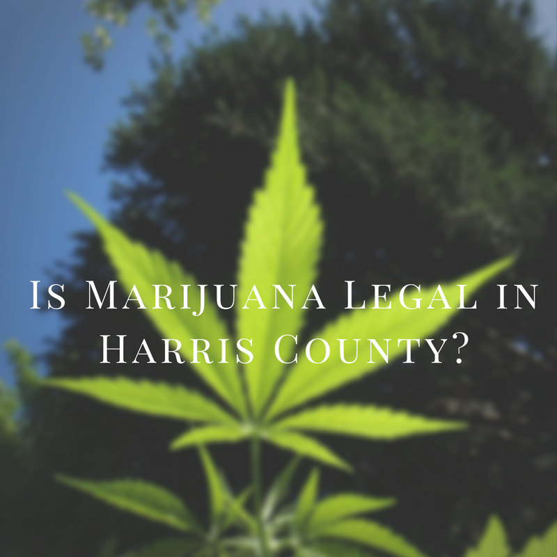 Harris County Misdemeanor Marijuana Diversion Program