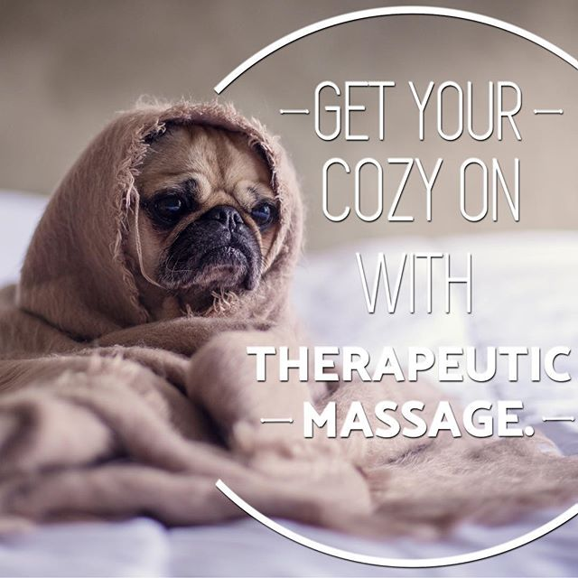I couldn't pass on this incredibly appropriate picture.  This weather got me in cozy mode. #puglife #cozy #massage #wintermood #happyholidays #warwick #rhodeisland