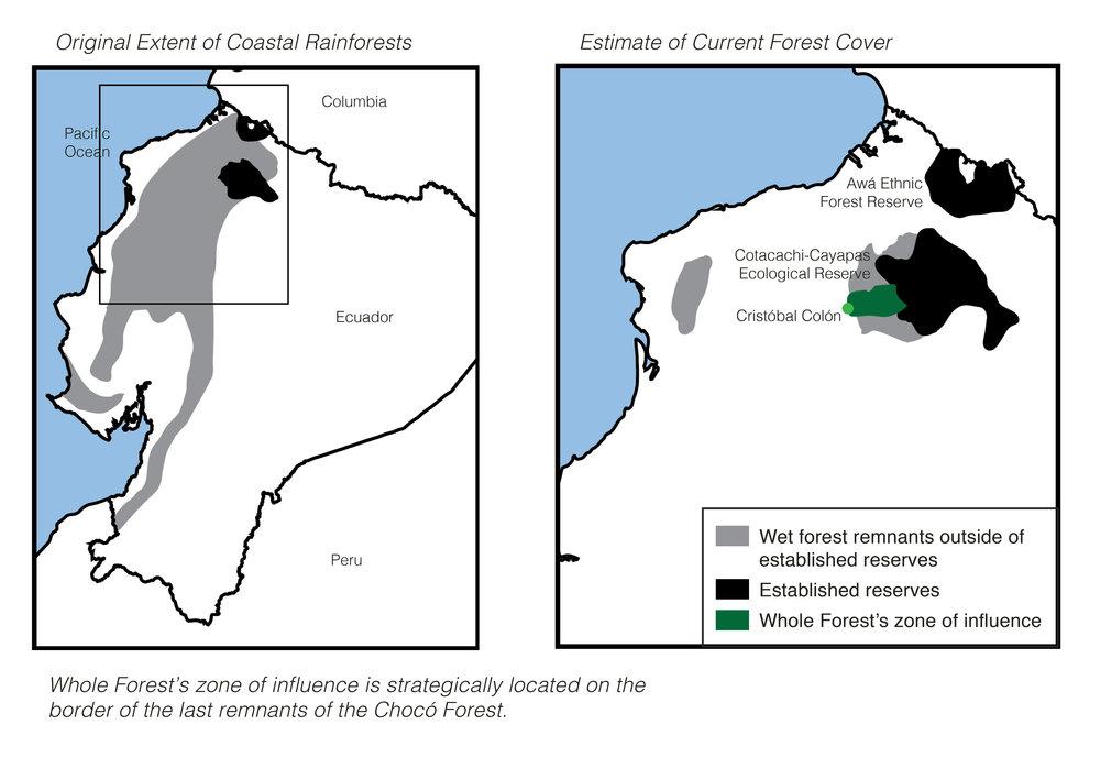 Deforestation Map.jpg