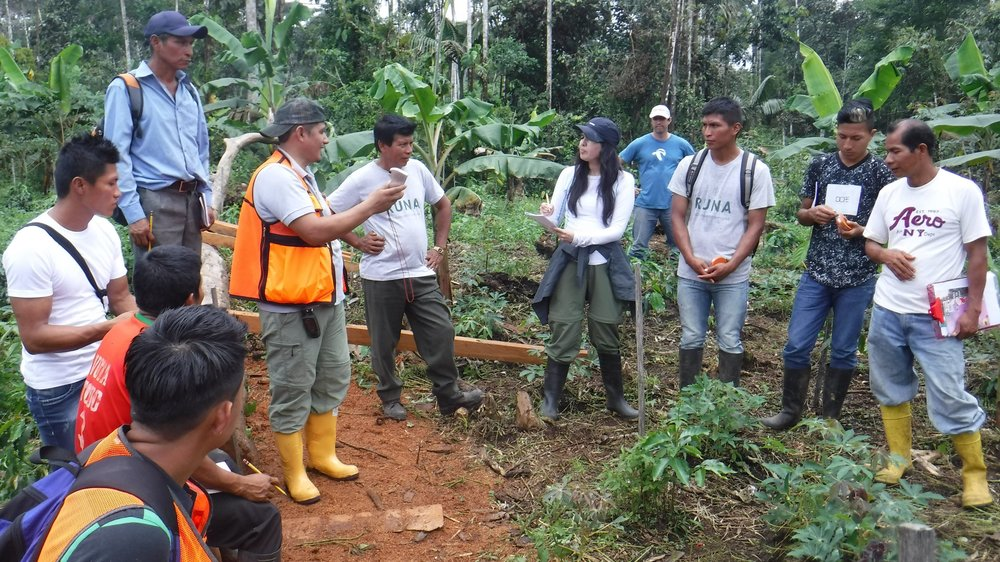 Collaborating with Communities    Building a sustainable forestry economy