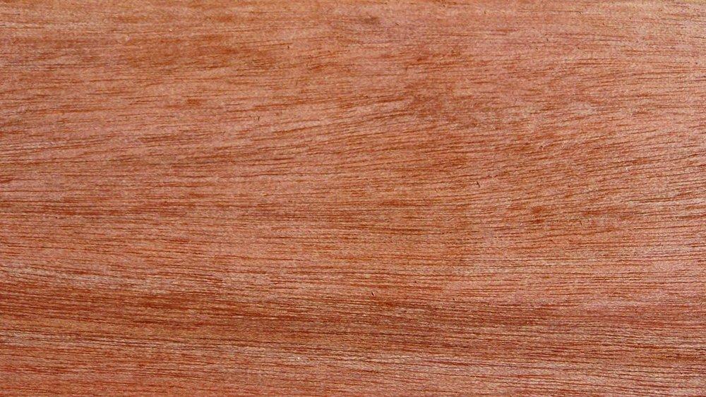 Copal - Protium ecuadorensis