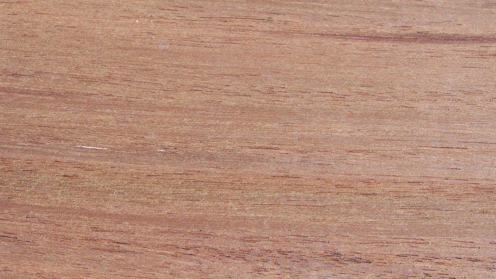 Mascarey - Hyeronima alchorneoides