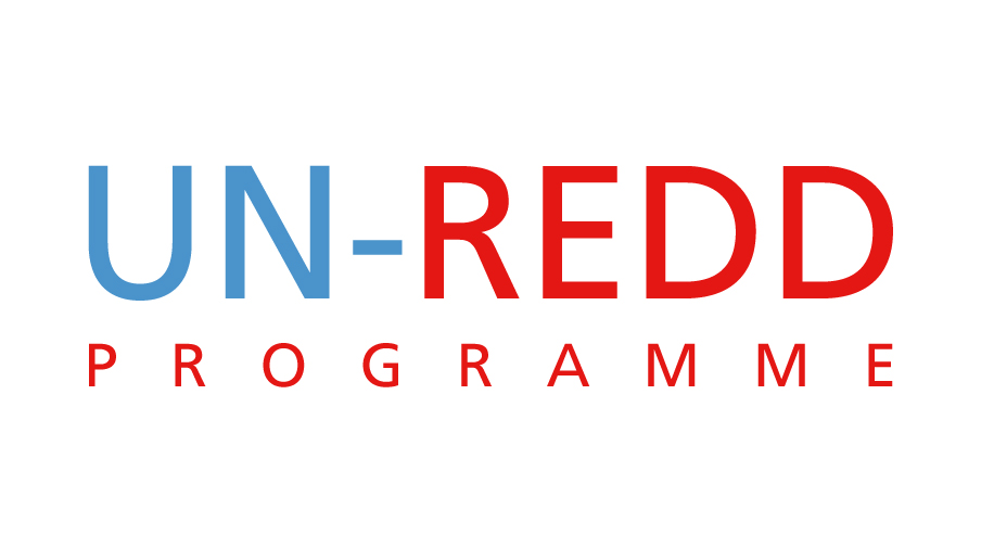 UN-REDD-logo.jpg