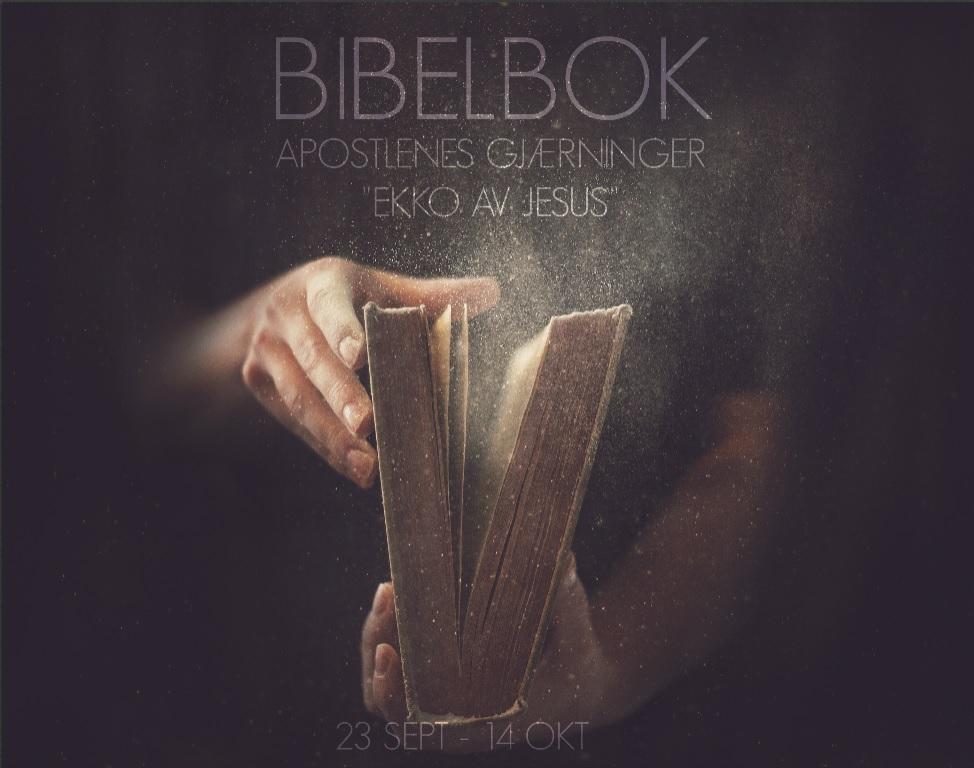 Bibelbok apg.jpg