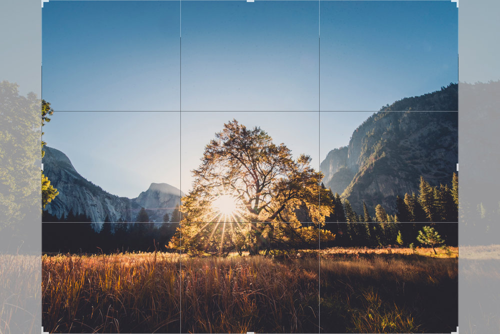 Above is an example of a 8x10 crop ratio