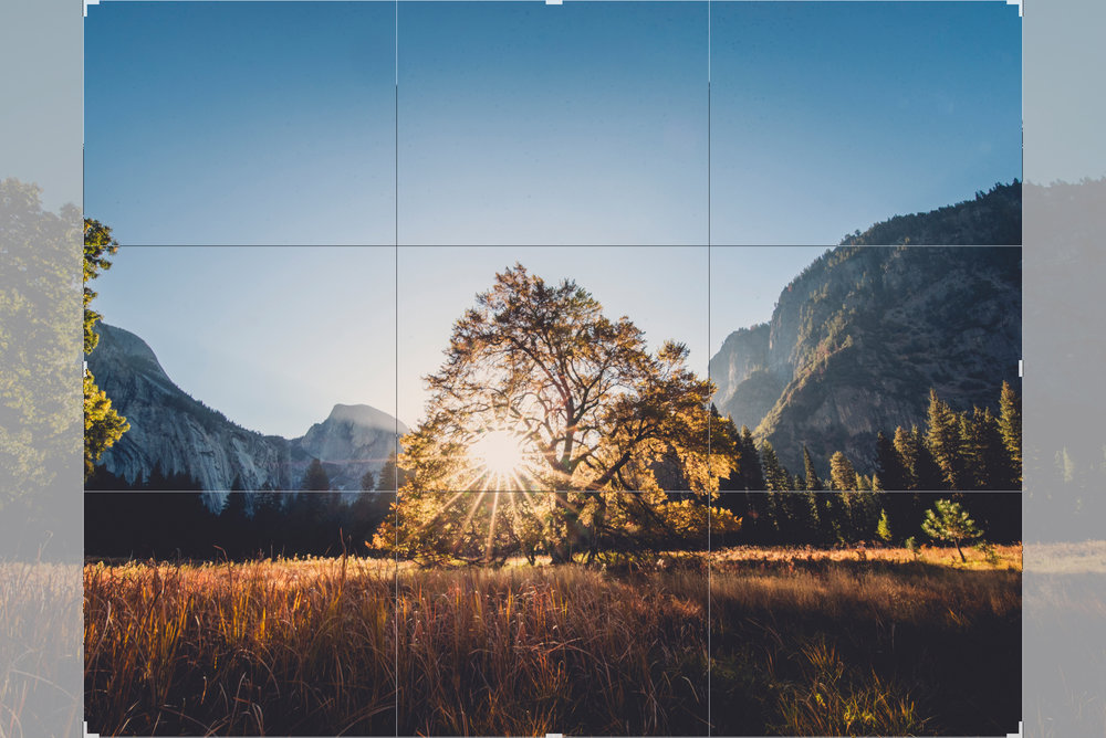 Above is an example of a 11x14 crop ratio