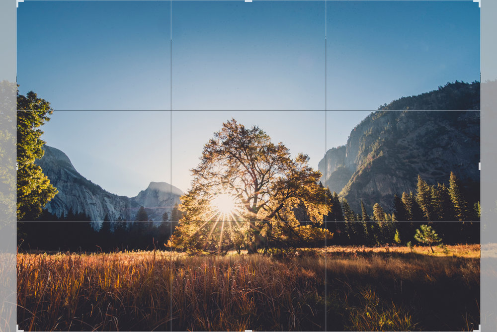 Above is an example of a 5x7 crop ratio