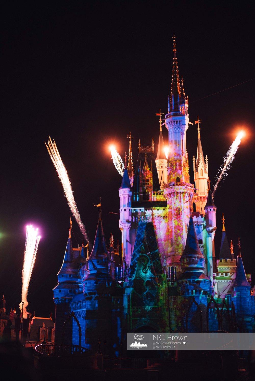 Disney Online Gallery-24.jpg
