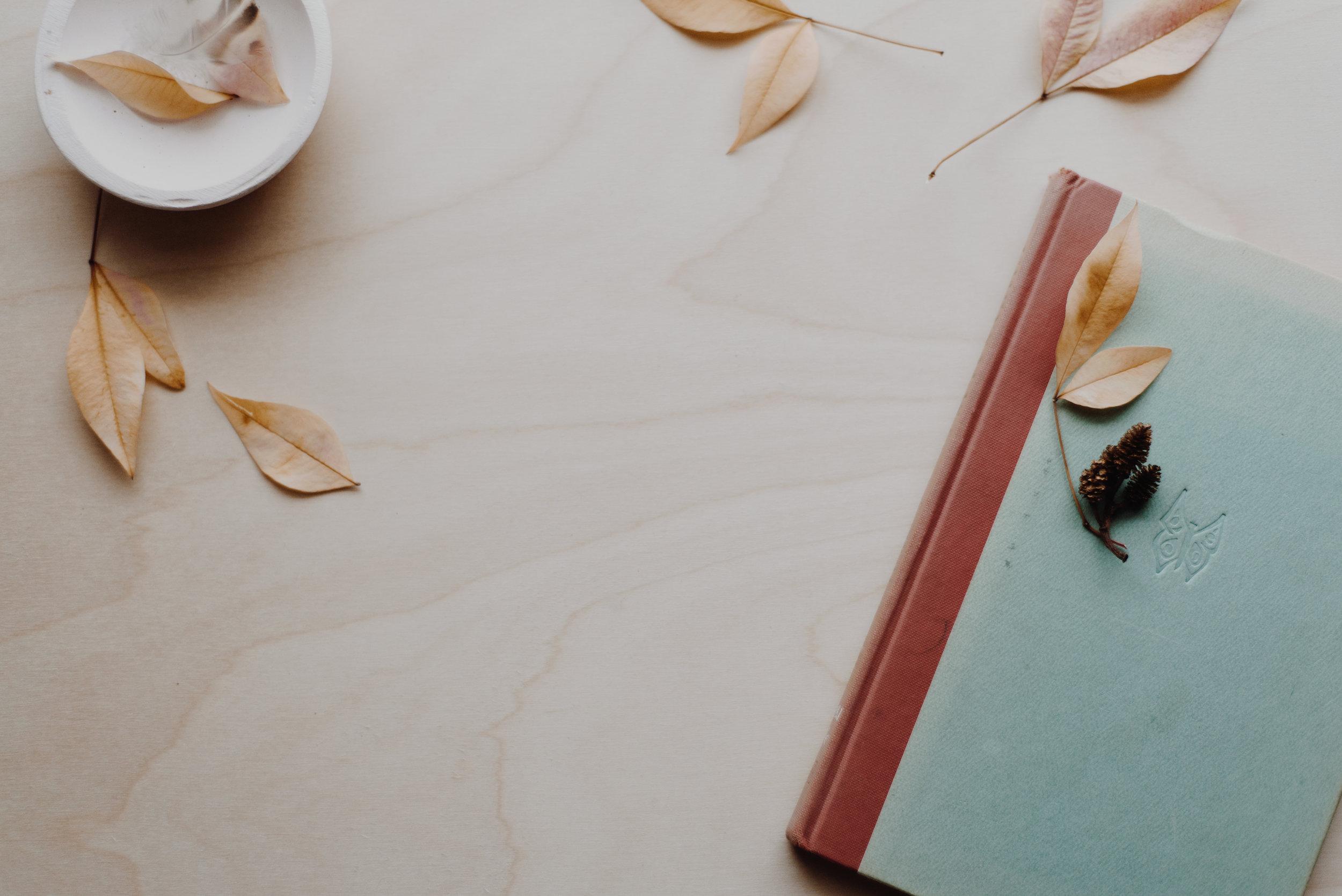 Blog — Divinely Interrupted