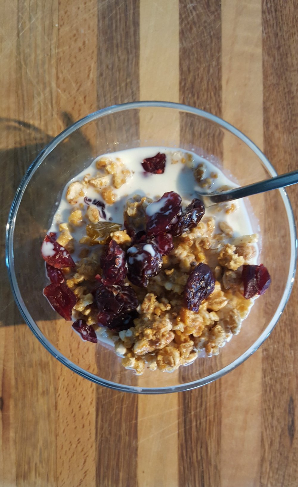 Granola with Organic Milk