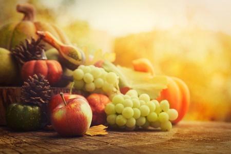 fall harvest .jpg