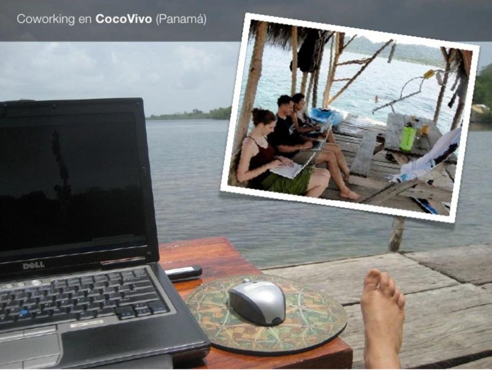 Resultado de imagem para CocoVivo (Isla de San Cristóbal, Panamá)
