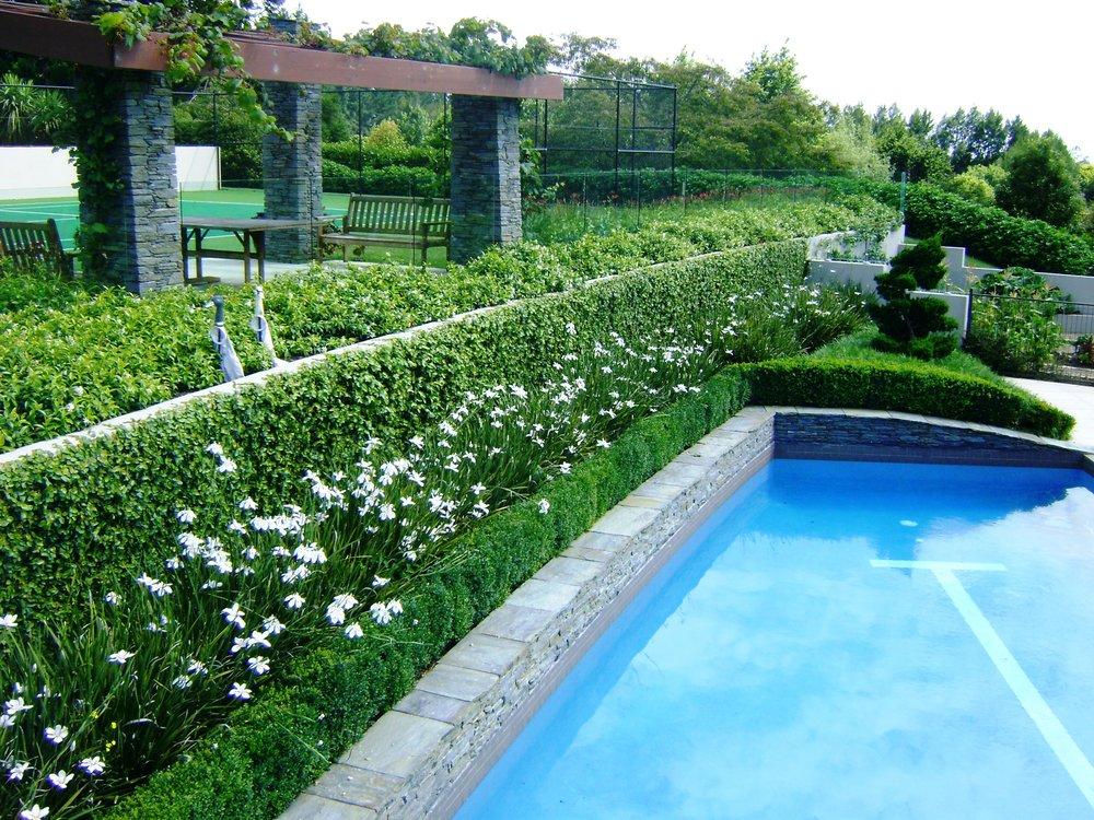 Twine landscape design for Pool design new zealand
