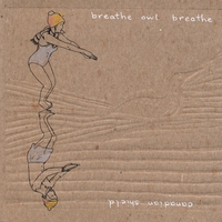 "Breathe Owl Breathe - ""Canadian Shield"""
