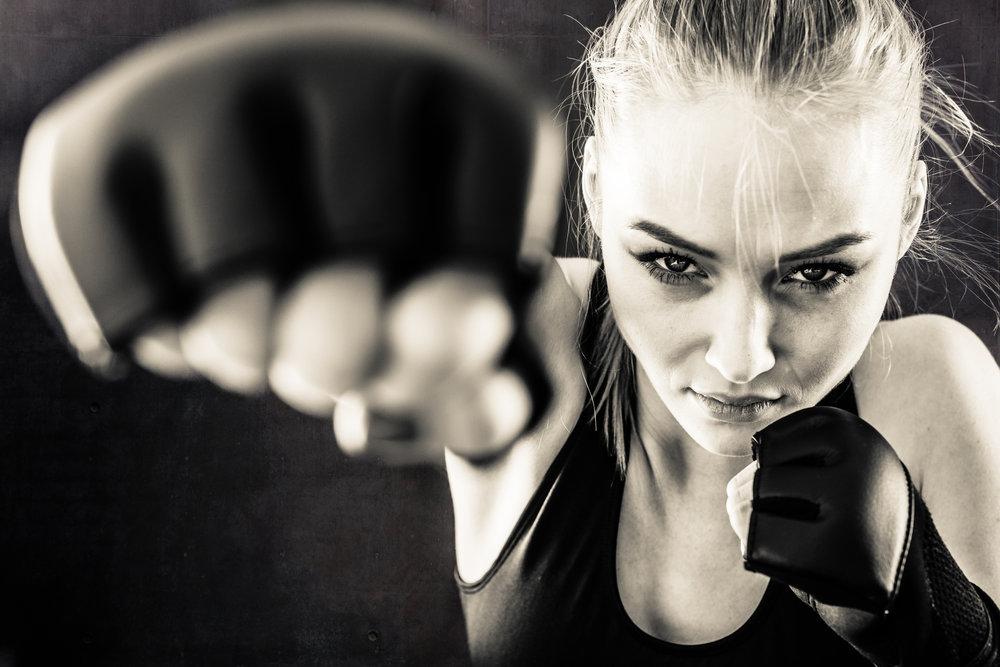 Adult Fitness martial arts