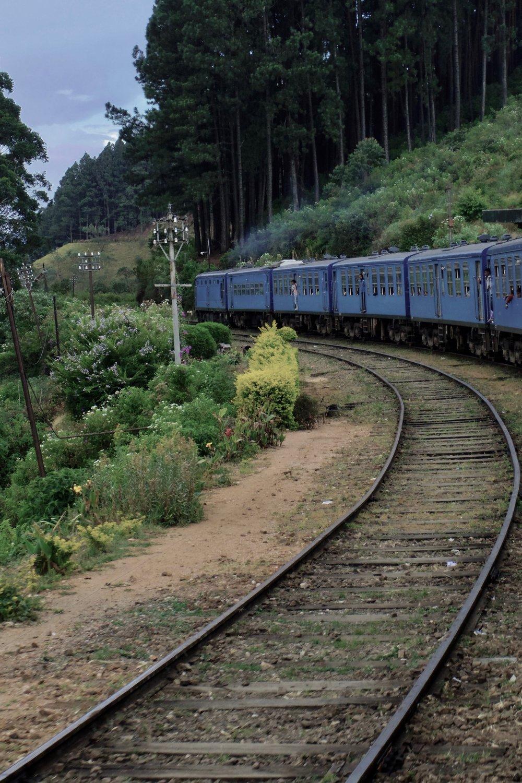 train 1 2.jpg