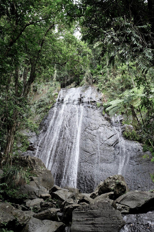 El Yunque National Forest Rucksack Magazine