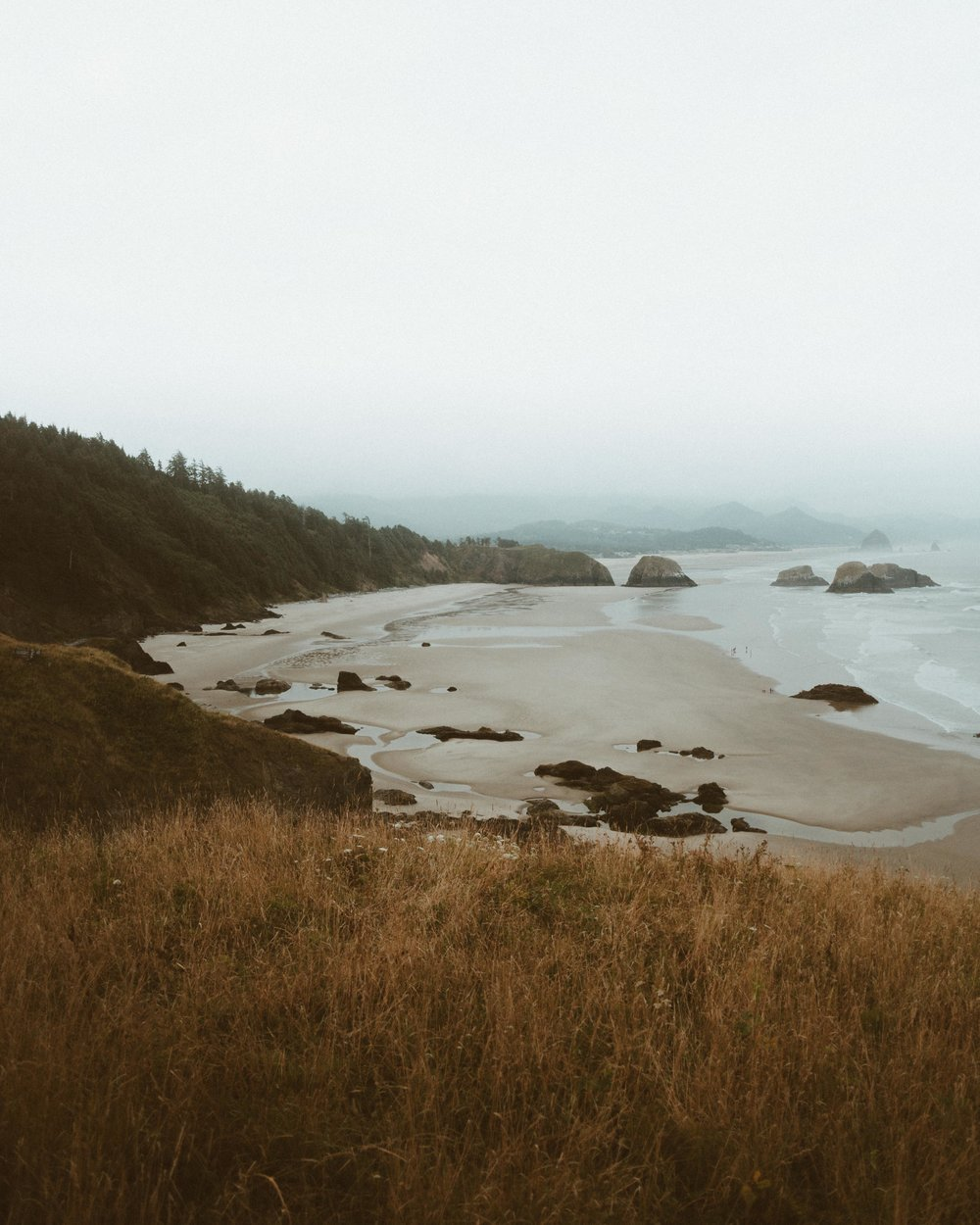 Tyler-Sartor-Oregon-Coast