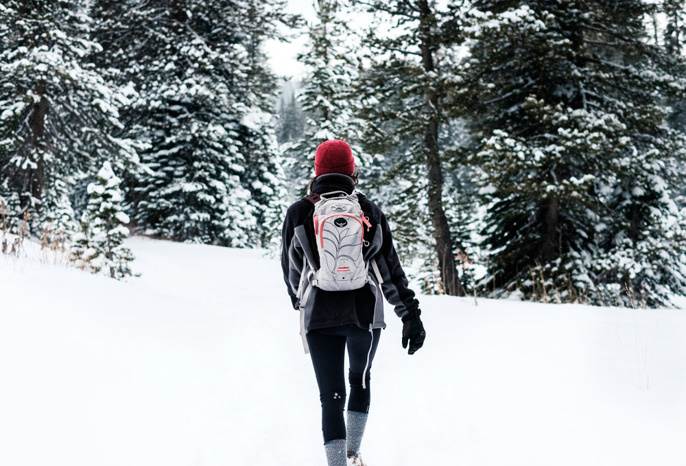 Tahoe National Forest-1.jpg