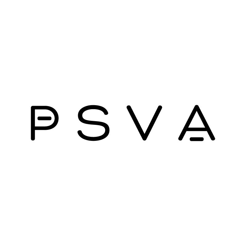 Logo, Branding, Squarespace store, Kickstarter Campaign, Media Kit