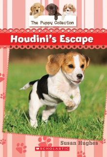 Houdini's Escape